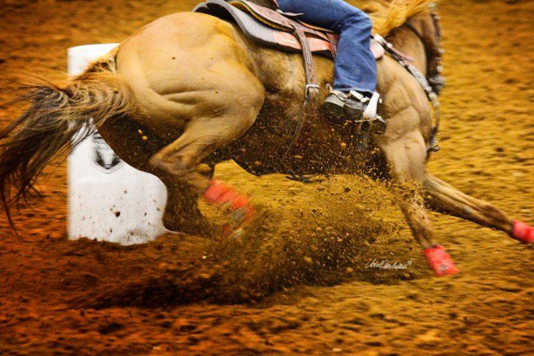 Rodeo #noflash #photoshop